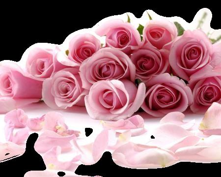 tubes roses roses
